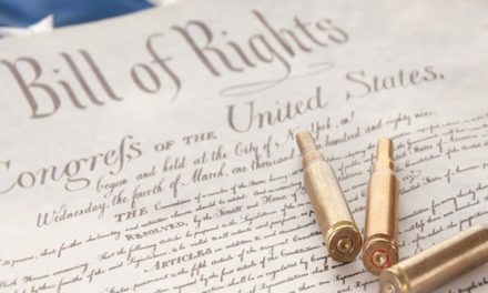 Are Dems in Congress Pushing to Take Away our Rights?