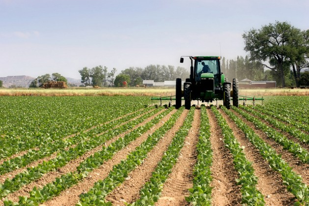 Foreign investment in U.S. farmland on the rise