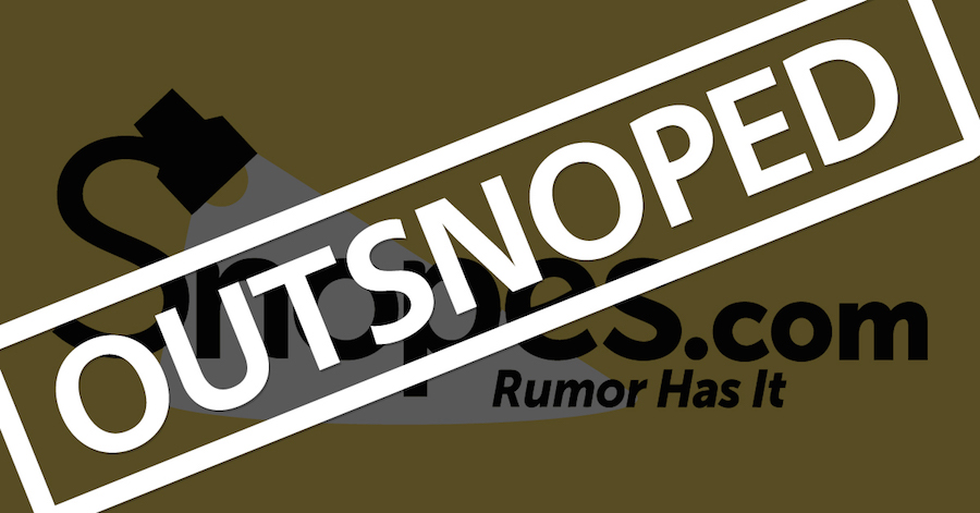 'Fact checking' website Snopes on verge of collapse after founder is accused of fraud, lies, and putting prostitutes and his honeymoon on expenses (and it hasn't told its readers THOSE facts)