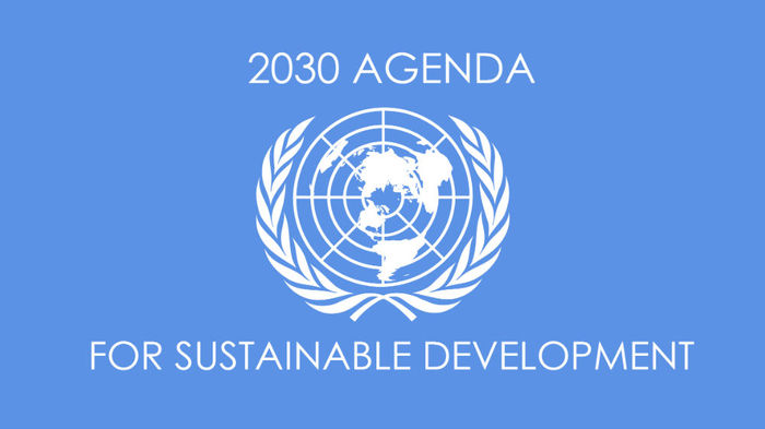 Exploring the Implementation of 2030