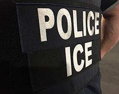 ICE arrests 32 sex offenders in Long Island Operation